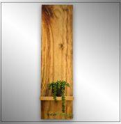 Australian Camphor Laurel wall hanger and plant display